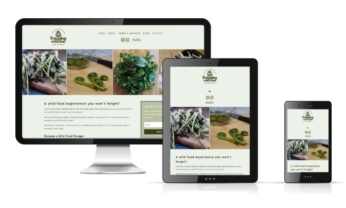 Image-of-Responsive-Website-for-Community-Futures-South-Fraser